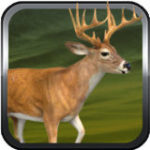 A Duck Life and Deer Beard Swamp Hunter 2014 – First Person Slingshot Shooter Dynasty Free