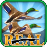 Real Bird Hunting Challenge