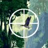 Jungle Duck Hunt